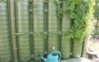 Récupérateur d'eau de pluie végétalisé